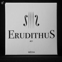 Cordas Avulsas Violino Erudithus