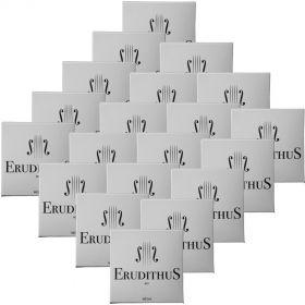 Encordoamento Violino Erudithus #01 KIT